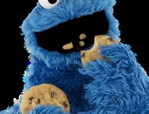 Vueling lo cobra todo menos las Cookies, esas se las come el usuario